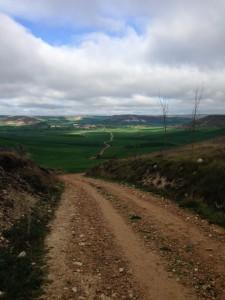 Entre Tardajos e Castrojeriz