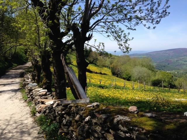 A caminho de Triacastela